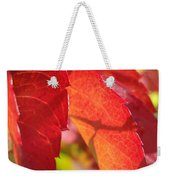 Autumn Reds Weekender Tote Bag