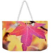 Autumn Still Weekender Tote Bag