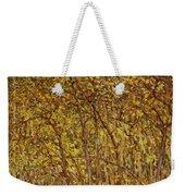 Autumn Sunlight Weekender Tote Bag