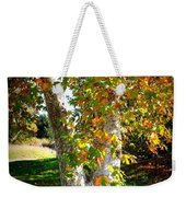Autumn Sycamore Tree Weekender Tote Bag