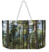 Autumn Tranquil Forest Weekender Tote Bag
