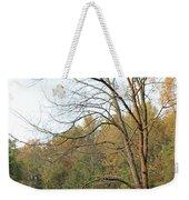 Autumn Tree At Sunset Light Weekender Tote Bag