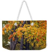 Autumn Trees In Park Weekender Tote Bag