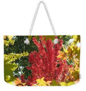 Autumn Trees Landscape Art Prints Canvas Fall Leaves Baslee Troutman Weekender Tote Bag