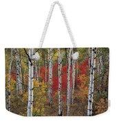 Autumn Warm Weekender Tote Bag