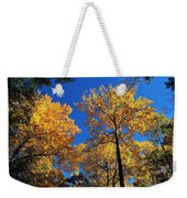Autumn Yellow Foliage On Tall Trees Against A Blue Sky In Palermo Weekender Tote Bag