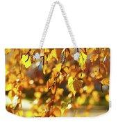 Autumnal Curtain Weekender Tote Bag