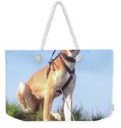 Ava-grace, Princess Of Arabia  #saluki Weekender Tote Bag by John Edwards