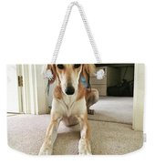 Ava On Her First Birthday #saluki Weekender Tote Bag