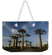 Avenue Des Baobabs Weekender Tote Bag