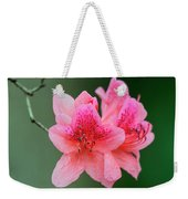 Azalea Blooms On A Green Background Weekender Tote Bag
