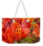 Azalea Flowers Art Prints Azaleas Gilcee Art Prints Baslee Troutman Weekender Tote Bag