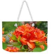 Azaleas Art Home Decor 14 Orange Azalea Flowers Art Prints Greeting Cards Weekender Tote Bag