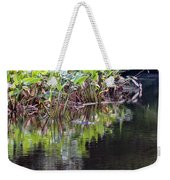 Babcock Wilderness Ranch - Alligator Den Weekender Tote Bag