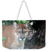 Babcock Wilderness Ranch - Oceola The Panther Gazing Weekender Tote Bag