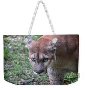 Babcock Wilderness Ranch - Oceola The Panther On The Prowl Weekender Tote Bag