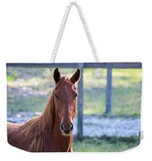 Babcock Wilderness Ranch - Red Horse Portait Weekender Tote Bag