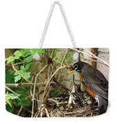 Babes In The Nest Weekender Tote Bag
