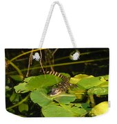 Baby Alligator Weekender Tote Bag