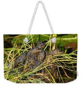 Baby Alligators Weekender Tote Bag