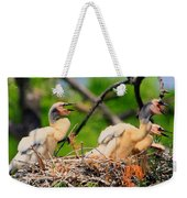 Baby Anhinga Chicks Weekender Tote Bag