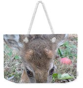 Baby Backyard Button Buck Weekender Tote Bag
