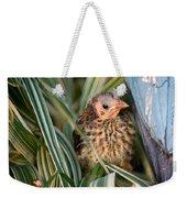 Baby Bird Hiding In Grass Weekender Tote Bag