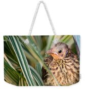 Baby Bird Peering Out Weekender Tote Bag