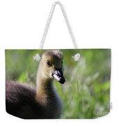 Baby Canadian Weekender Tote Bag