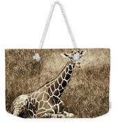 Baby Giraffe In Grasses Weekender Tote Bag