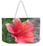 Baby Grasshopper On Hibiscus Flower Weekender Tote Bag