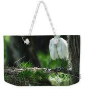 Baby Great Egrets With Nest Weekender Tote Bag