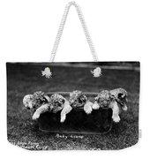 Baby Lions, C1900 Weekender Tote Bag