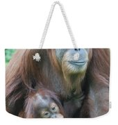 Baby Orangutan Clinging To His Mother Weekender Tote Bag