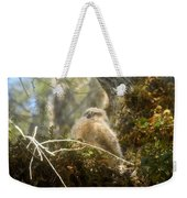 Baby Owl Sleeping Weekender Tote Bag