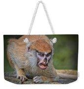 Baby Patas Monkey On Guard  Weekender Tote Bag