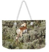 Baby Pronghorn Feeding Weekender Tote Bag