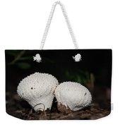 Baby Puffballs Weekender Tote Bag