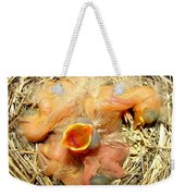 Baby Robins Newly Hatched Weekender Tote Bag