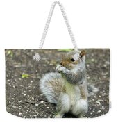 Baby Squirrel Weekender Tote Bag