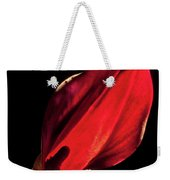 Back Lit Black Calla Lily Weekender Tote Bag