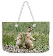 Back To Back Prairie Dogs Weekender Tote Bag