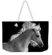 Backlit Arabian Weekender Tote Bag