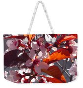 Backlit Pink Tree Blossoms Weekender Tote Bag