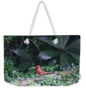 Backyard Friend Weekender Tote Bag