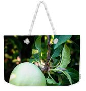 Backyard Garden Series - 2 Apples Weekender Tote Bag