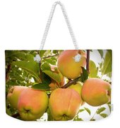 Backyard Garden Series - Apples In Apple Tree Weekender Tote Bag