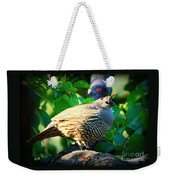 Backyard Garden Series - Quail In A Pear Tree Weekender Tote Bag