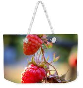 Backyard Garden Series - The Freshest Raspberries Weekender Tote Bag
