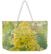 Backyard Weekender Tote Bag by Leah  Tomaino